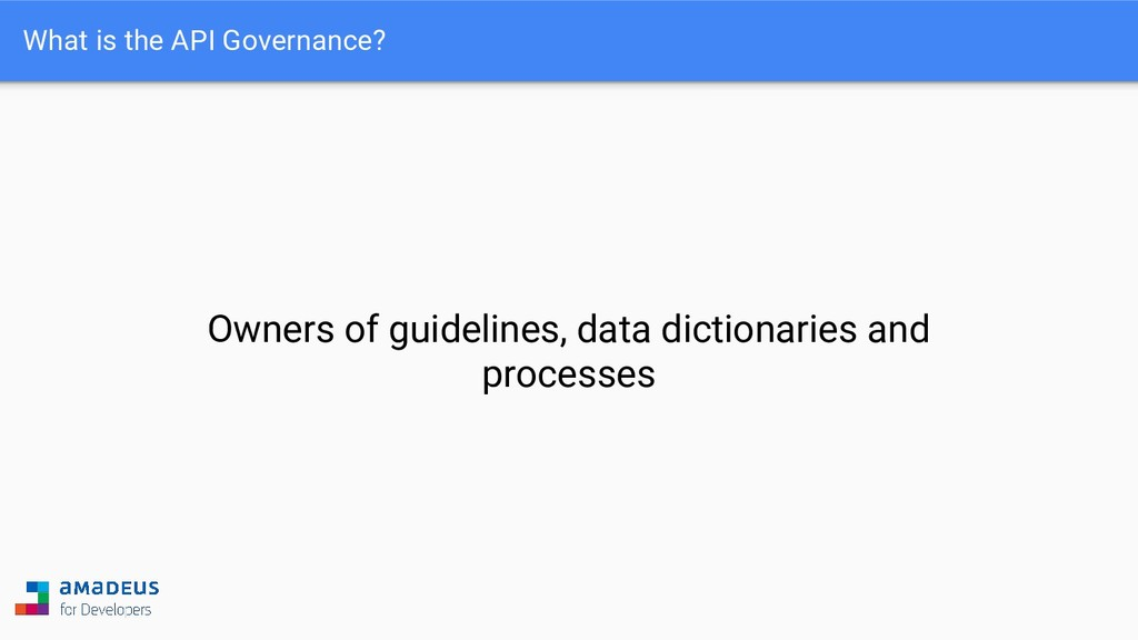 What is the API Governance? Owners of guideline...