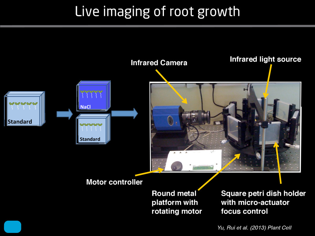 Live imaging of root growth Infrared Camera Inf...