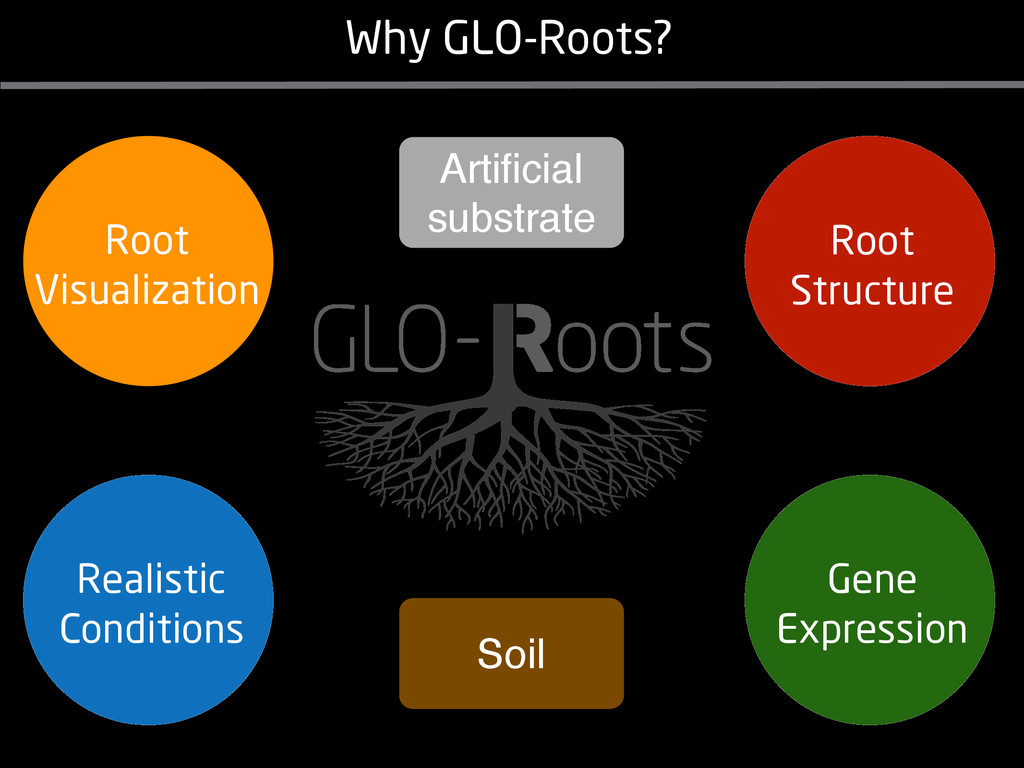 Why GLO-Roots? Soil Artificial substrate Gene Ex...