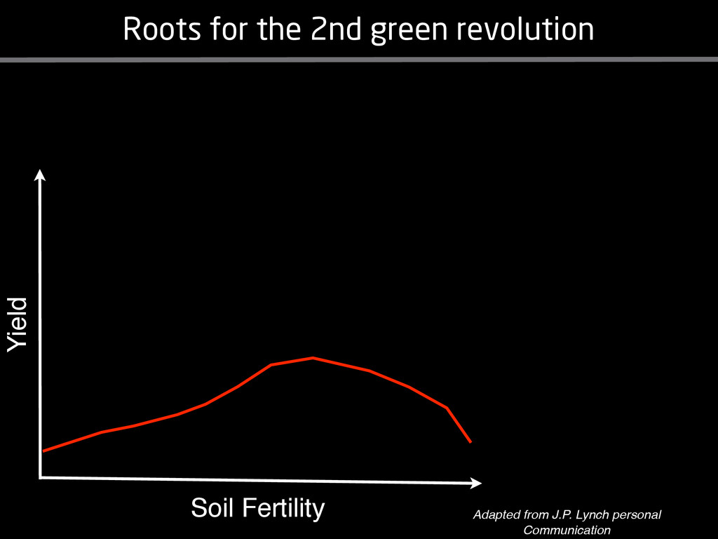 Soil Fertility Yield Roots for the 2nd green re...