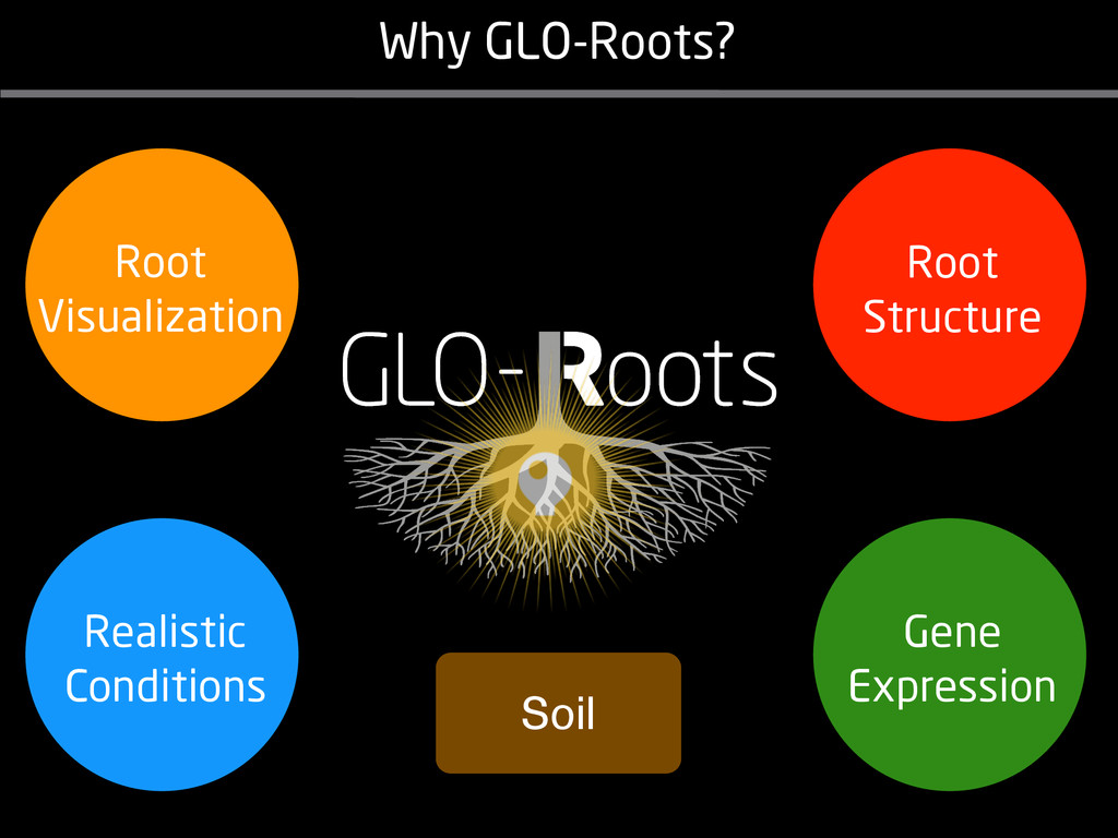Why GLO-Roots? Soil Gene Expression Root Struct...