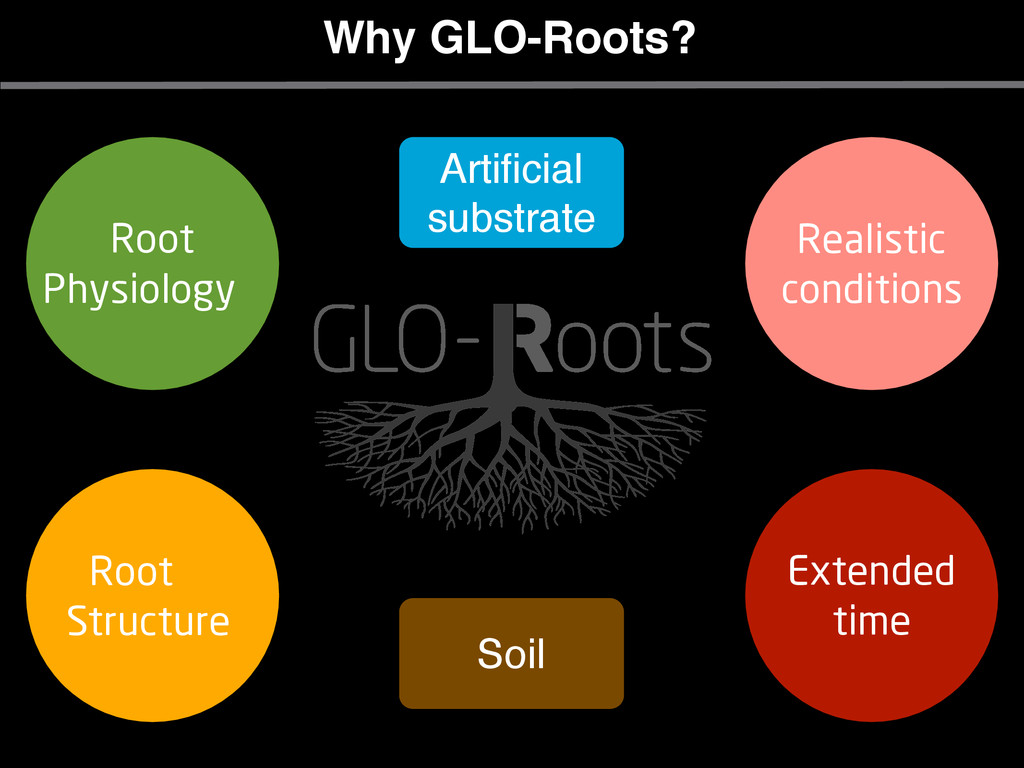 Why GLO-Roots? Soil Root Physiology Root Struct...