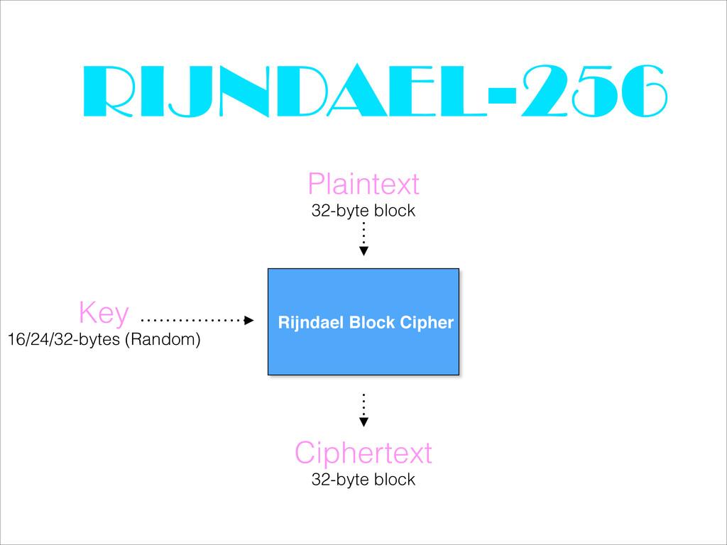 RIJNDAEL-256 Plaintext Rijndael Block Cipher 32...
