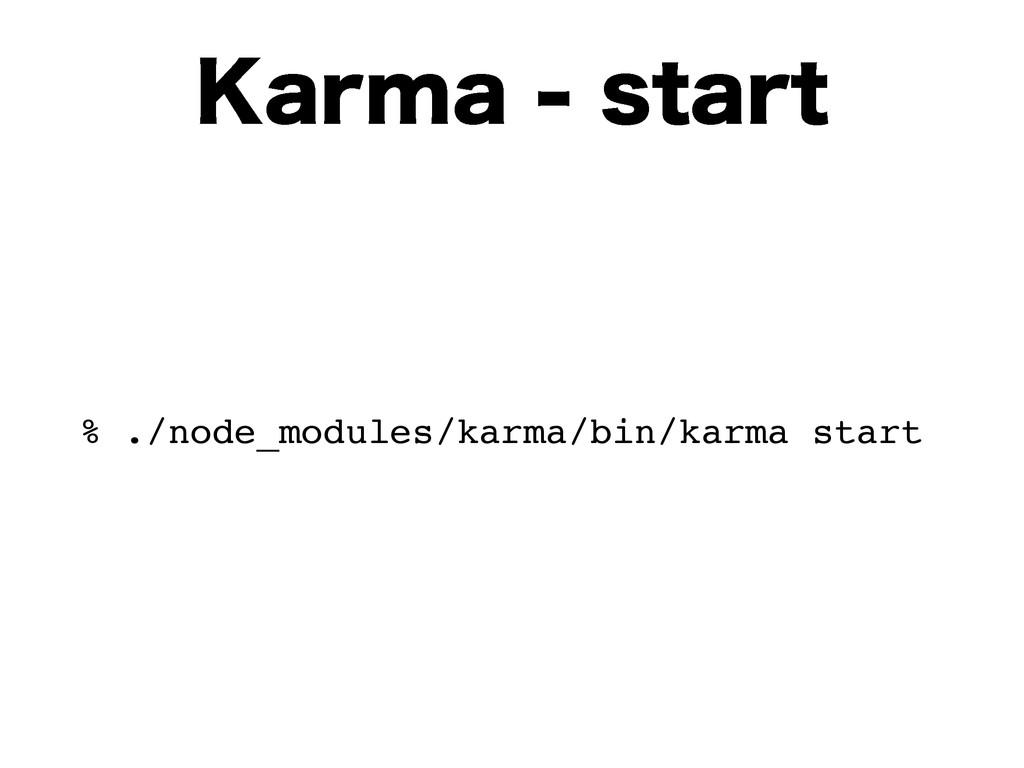 ,BSNBTUBSU % ./node_modules/karma/bin/karma ...