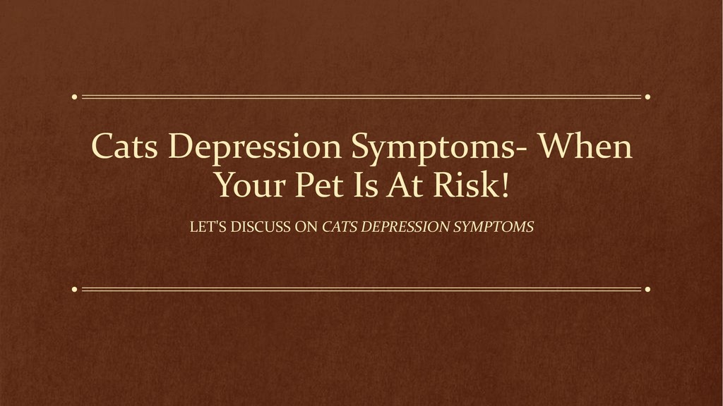Cats Depression Symptoms- When Your Pet Is At R...