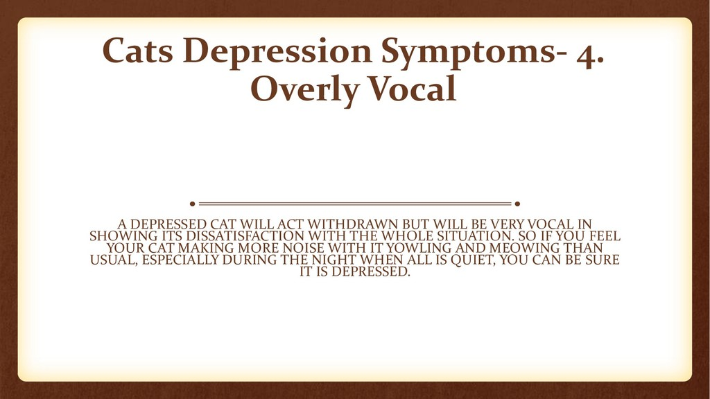 Cats Depression Symptoms- 4. Overly Vocal A DEP...