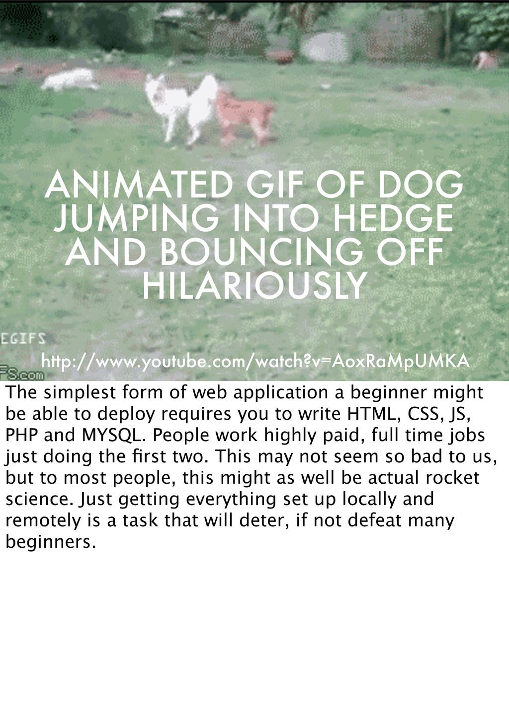 ANIMATED GIF OF DOG JUMPING INTO HEDGE AND BOUN...