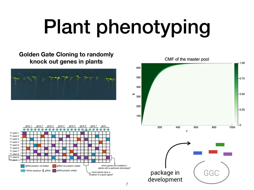Plant phenotyping Golden Gate Cloning to random...