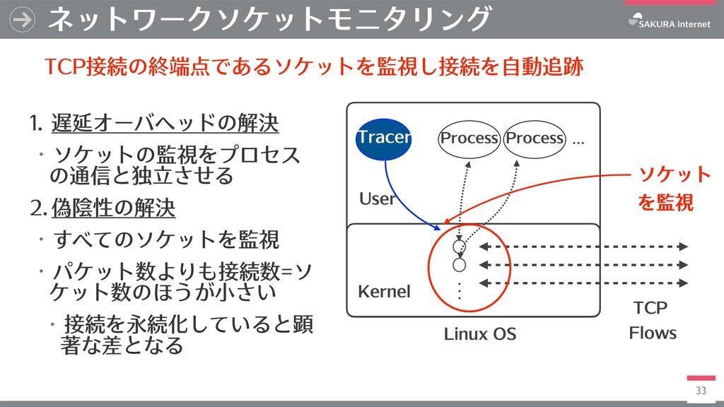 33 ネットワークソケットモニタリング Linux OS Kernel Process Pro...