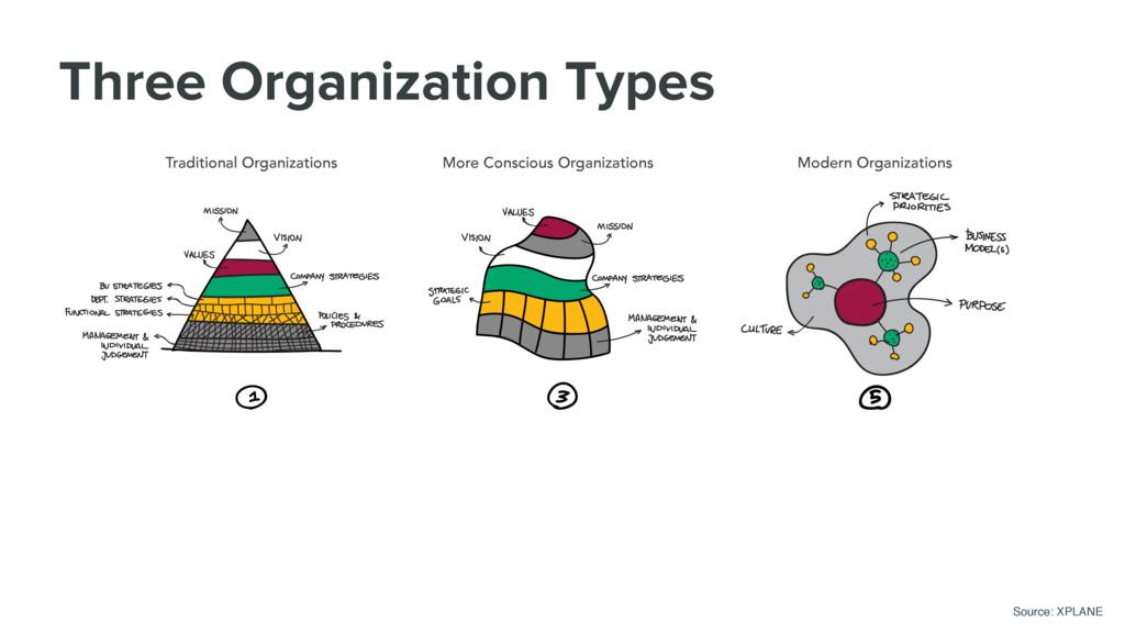 Three Organization Types Traditional Organizati...
