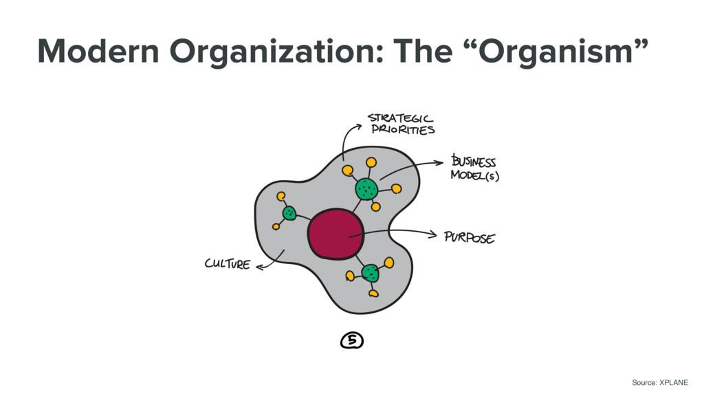 "Modern Organization: The ""Organism"" Source: XPL..."