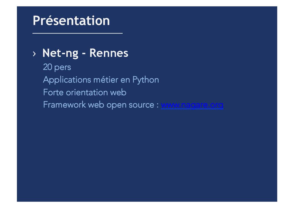 › Net-ng - Rennes 20 pers Applications métier ...