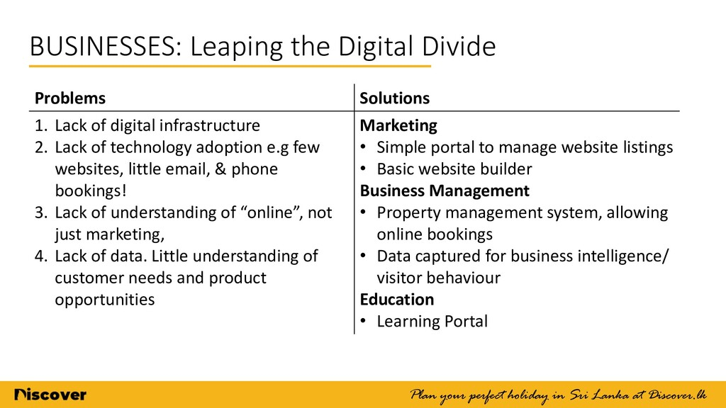 BUSINESSES: Leaping the Digital Divide Plan you...