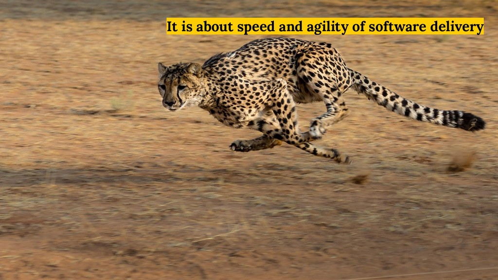 It is about speed and agility of software deliv...