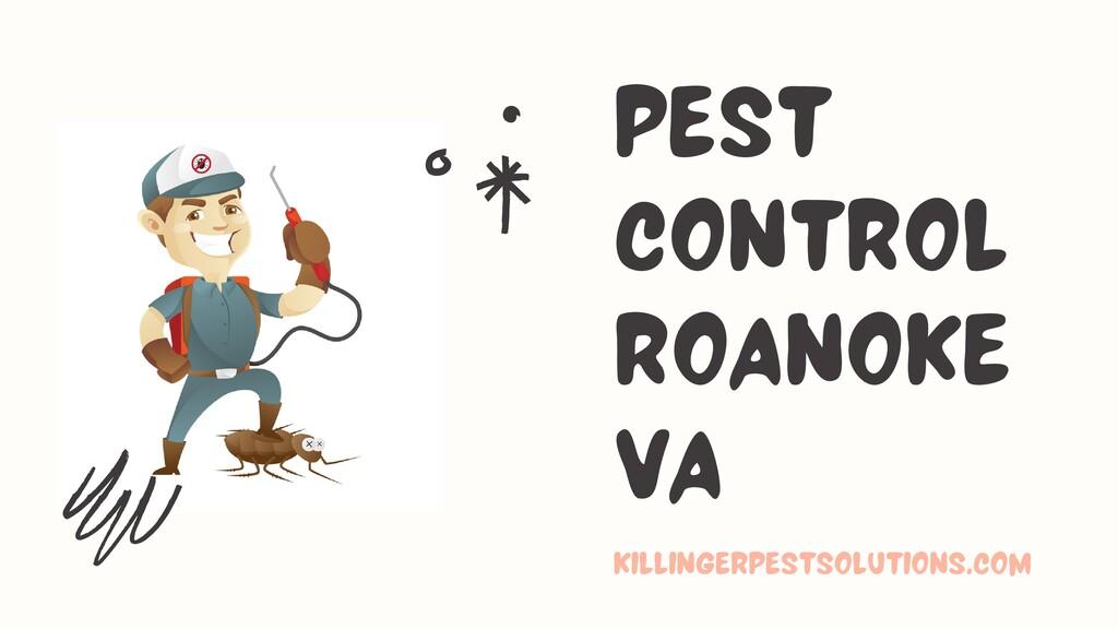 pest control roanoke va killingerpestsolutions....