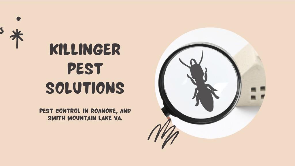 Killinger Pest Solutions Pest Control in Roanok...