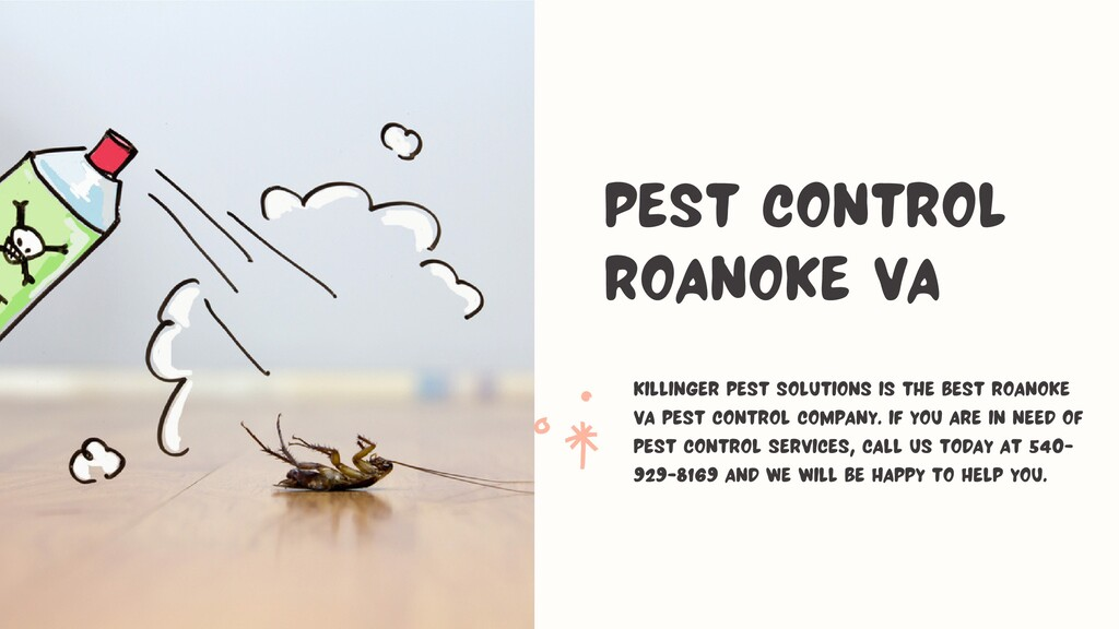 Killinger Pest Solutions is the best Roanoke VA...