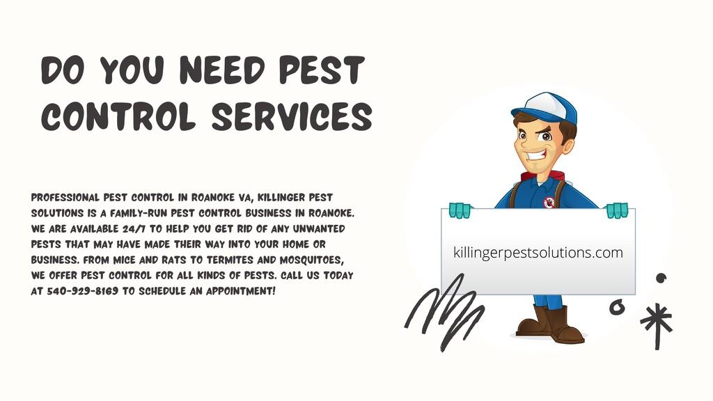 Professional Pest Control in Roanoke VA, Killin...