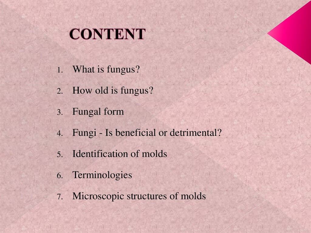 1. What is fungus? 2. How old is fungus? 3. Fun...