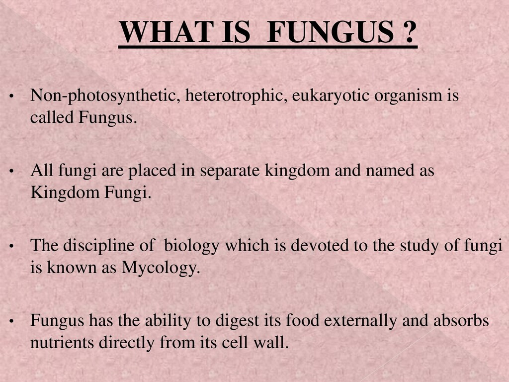 WHAT IS FUNGUS ? • Non-photosynthetic, heterotr...