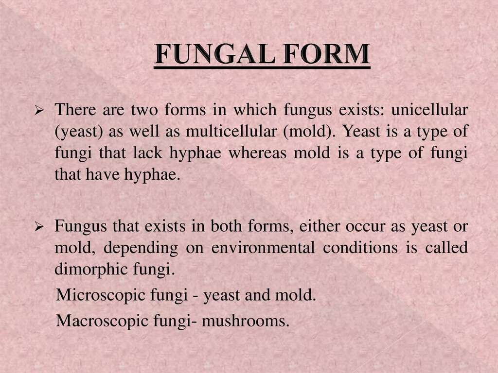 ➢ There are two forms in which fungus exists: u...