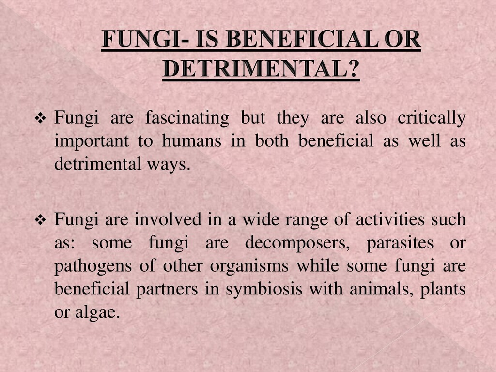 ❖ Fungi are fascinating but they are also criti...