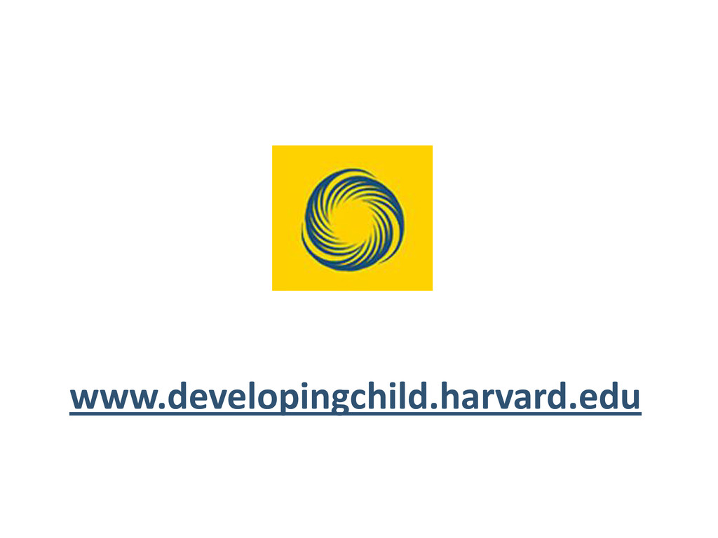 www.developingchild.harvard.edu