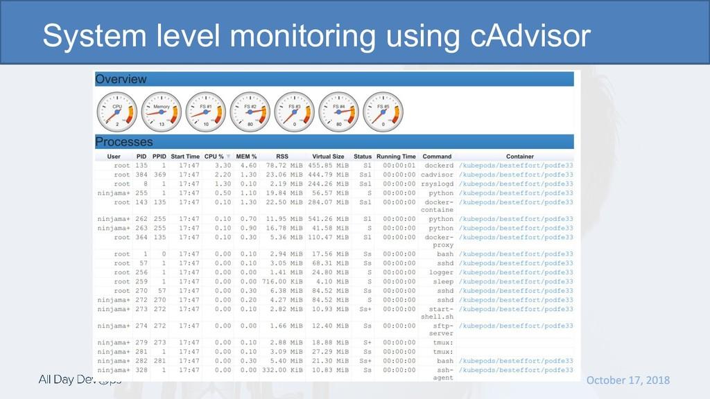 System level monitoring using cAdvisor