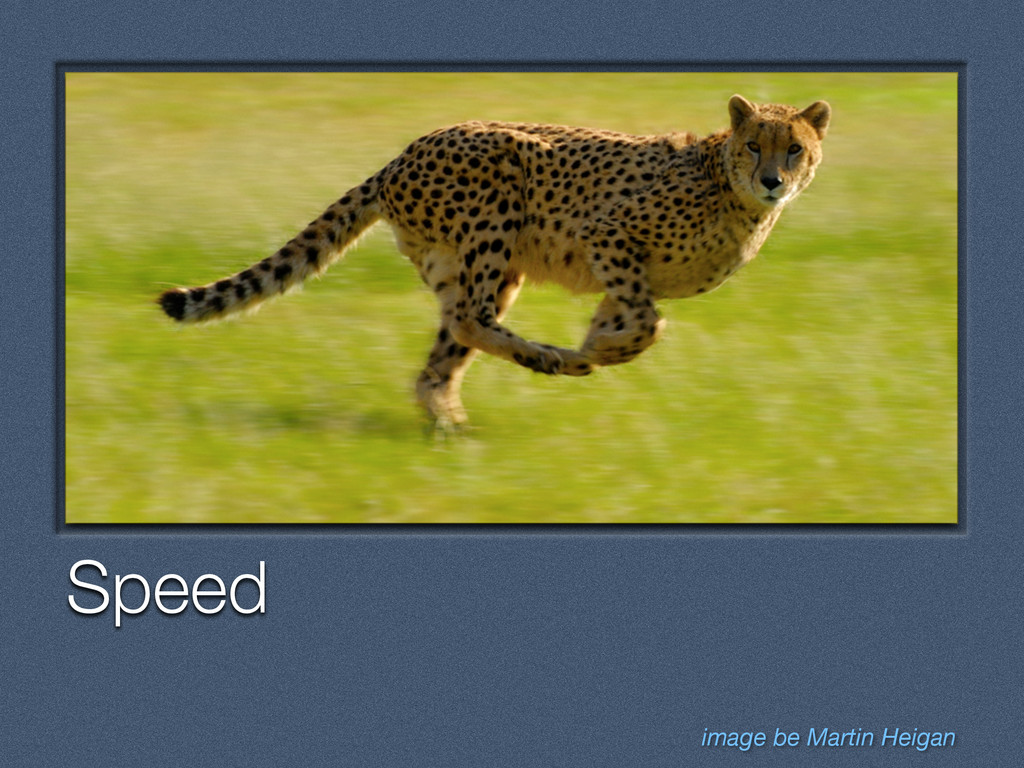Text Speed image be Martin Heigan