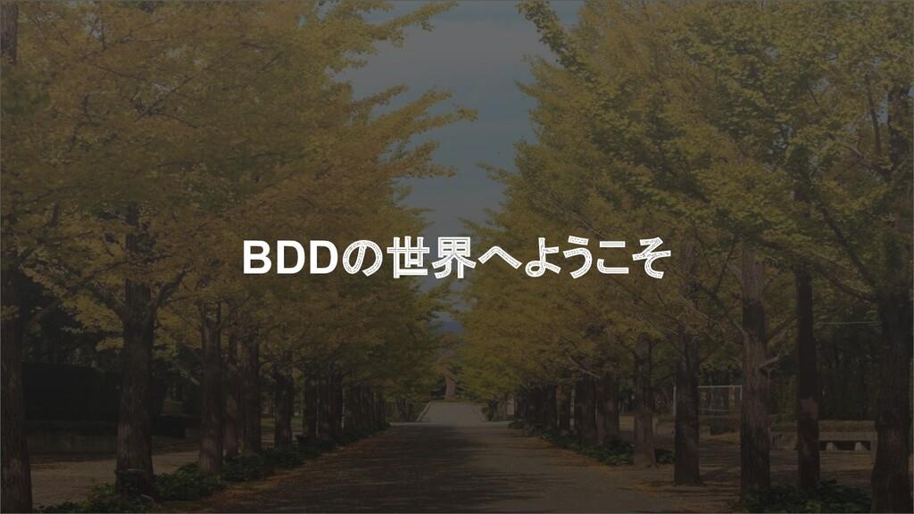 BDDの世界へようこそ