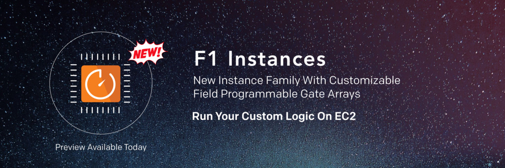 F1 Instances New Instance Family With Customiza...