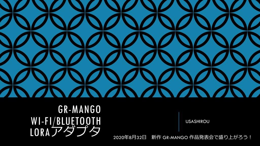 GR-MANGO WI-FI/BLUETOOTH LORAアダプタ USASHIROU 202...