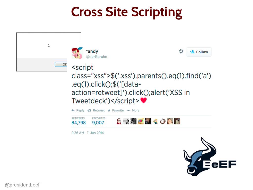 @presidentbeef Cross Site Scripting
