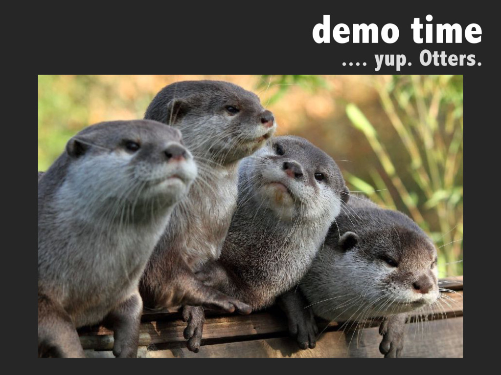 demo time .... yup. Otters.