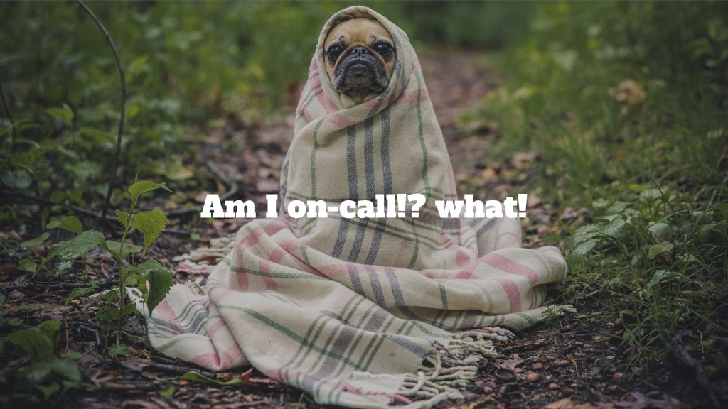 @srhtcn Am I on-call!? what!