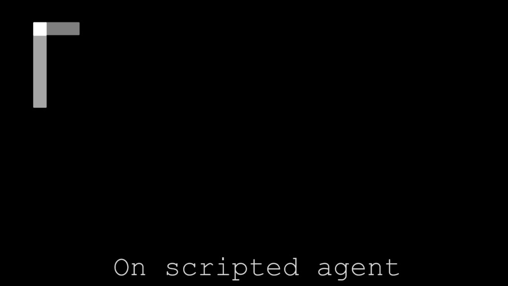 Diferent type of Nets On scripted agent