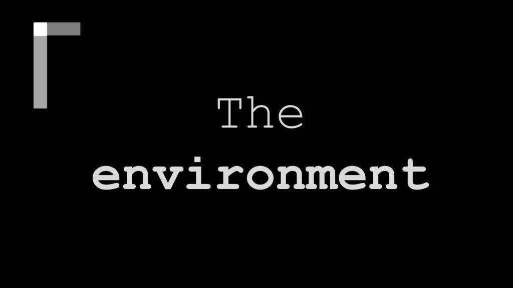 The environment The environment