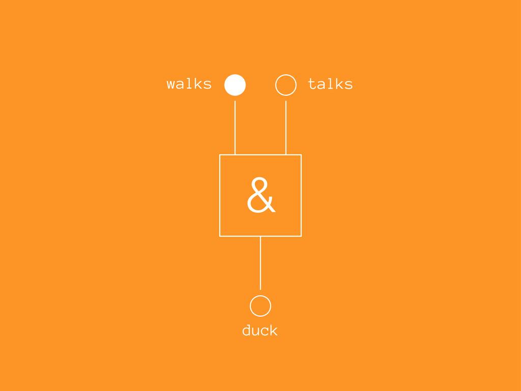 & walks talks duck