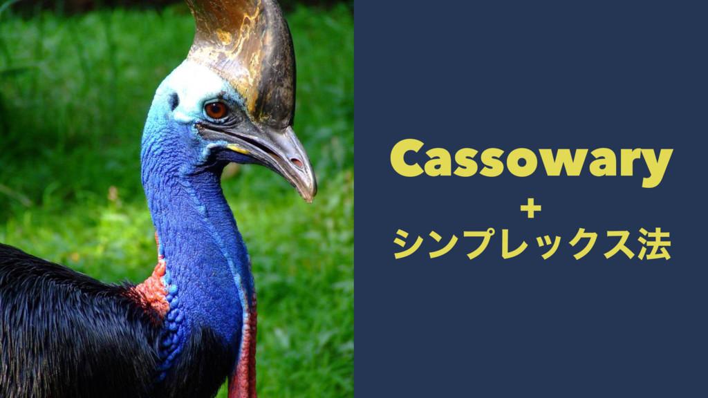 Cassowary + γϯϓϨοΫε๏