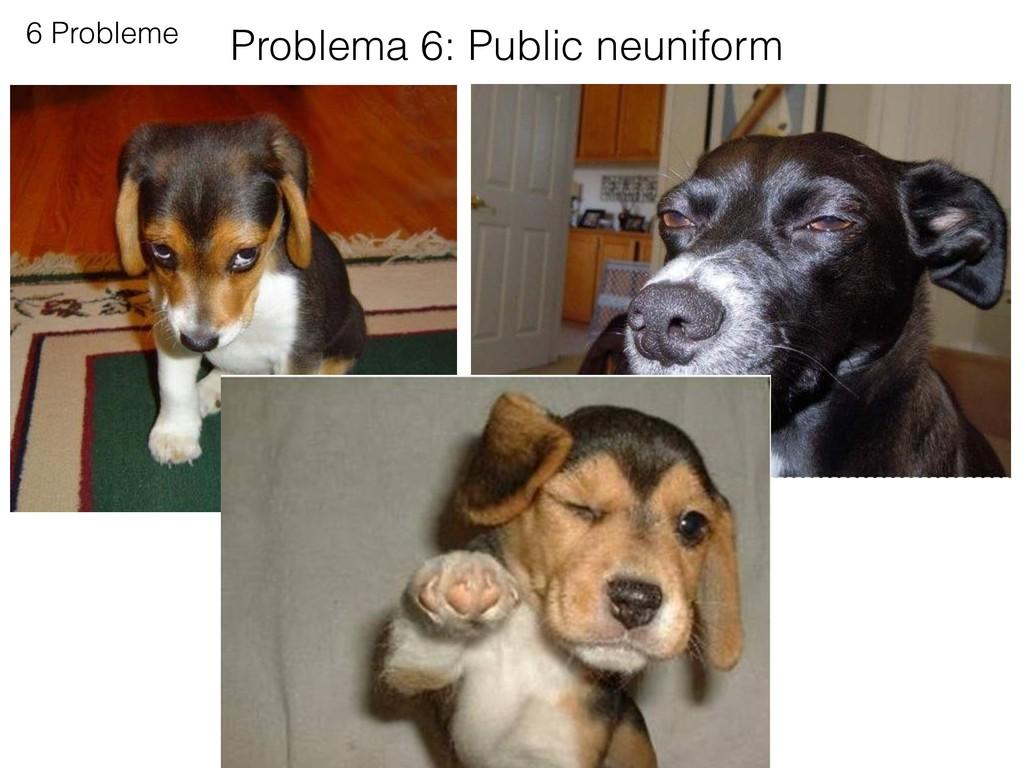 6 Probleme Problema 6: Public neuniform