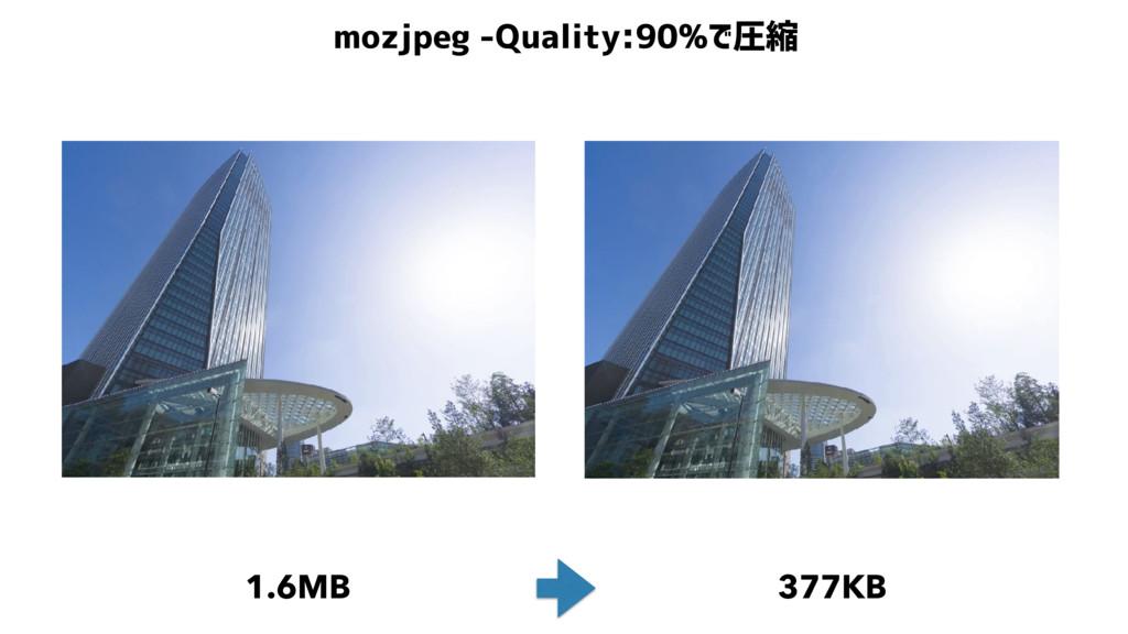 mozjpeg -Quality:90%で圧縮 1.6MB 377KB
