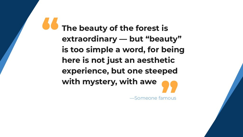 """""""The beauty of the forest is extraordinary — bu..."""