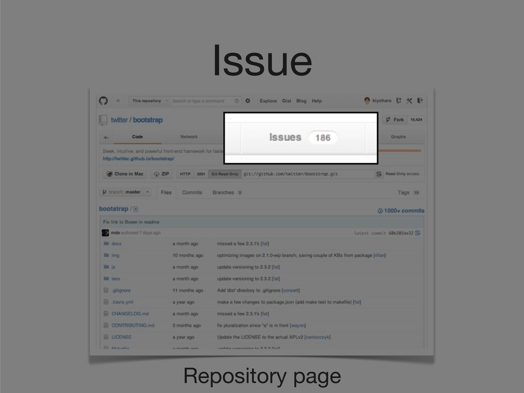 Issue Repository page