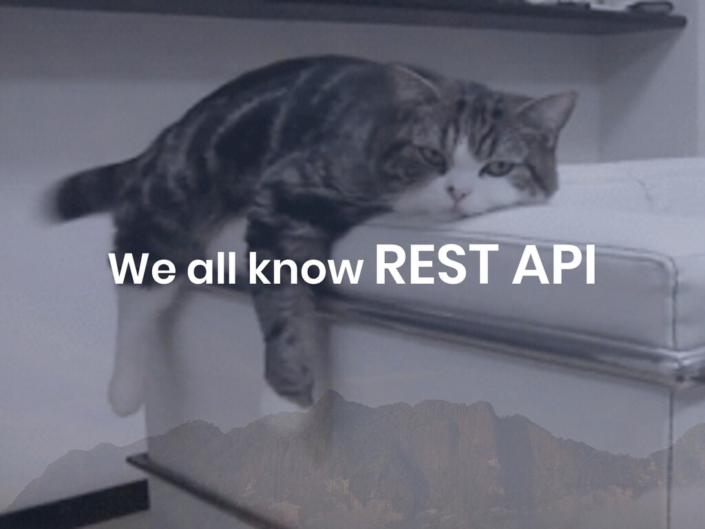 We all know REST API