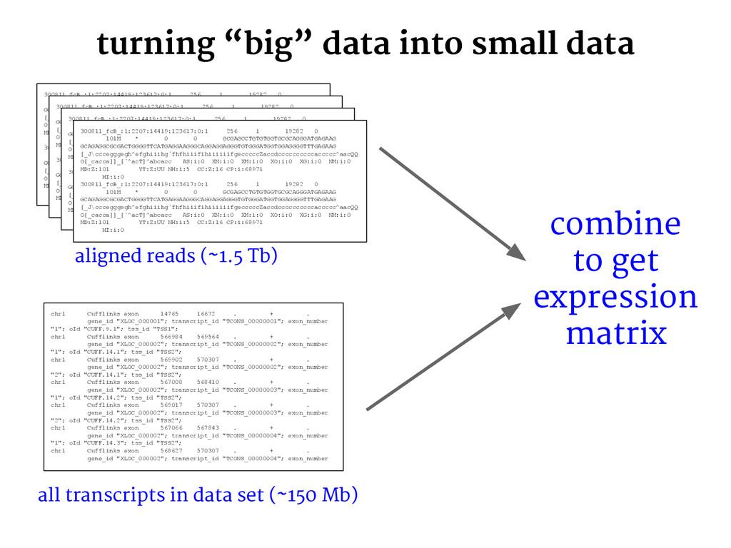 """turning """"big"""" data into small data 300811_fcB_:..."""