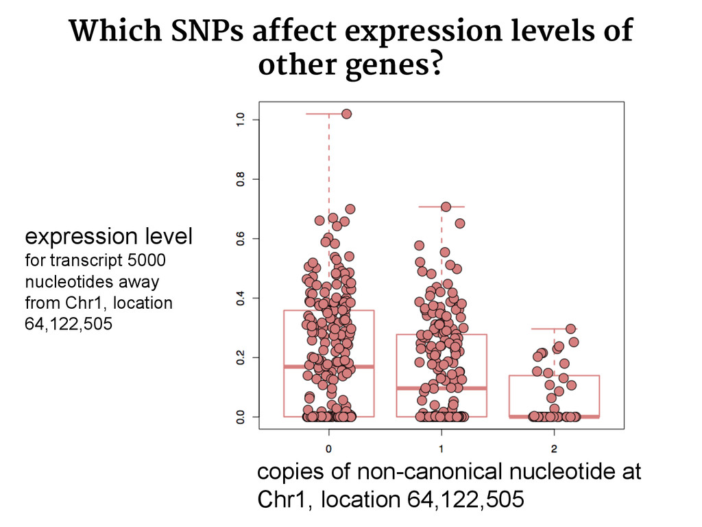 Which SNPs affect expression levels of other ge...