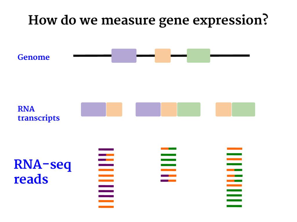 How do we measure gene expression? RNA-seq read...