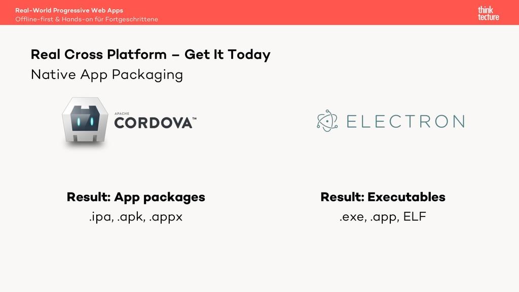 Native App Packaging Result: App packages .ipa,...