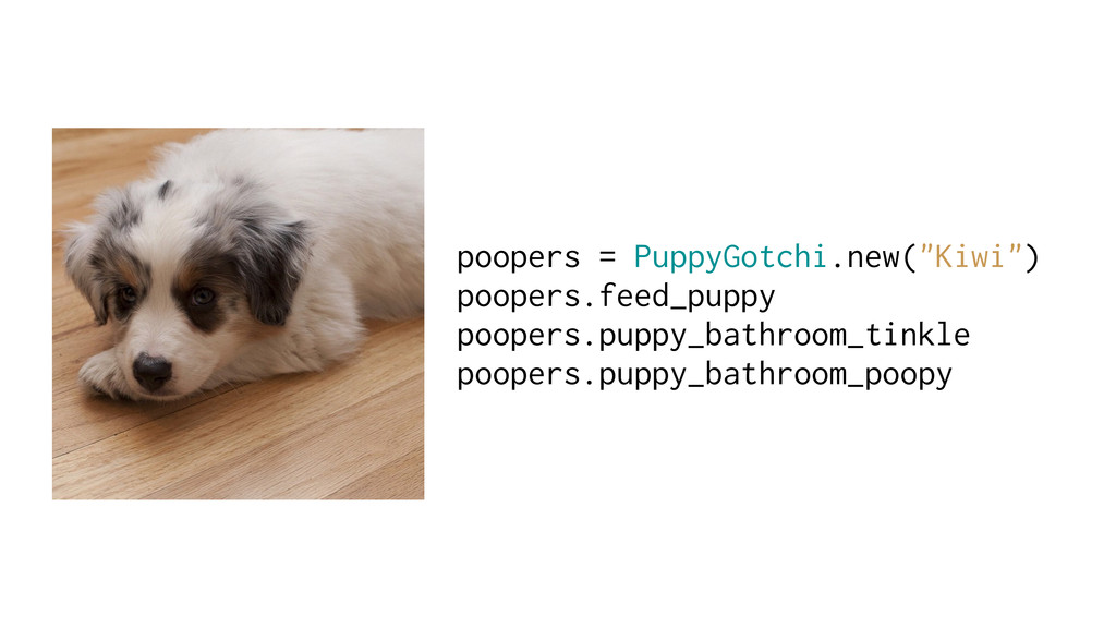 "poopers = PuppyGotchi.new(""Kiwi"") poopers.feed_..."