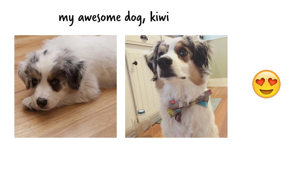 my awesome dog, kiwi
